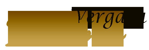Silvina Vergara logo